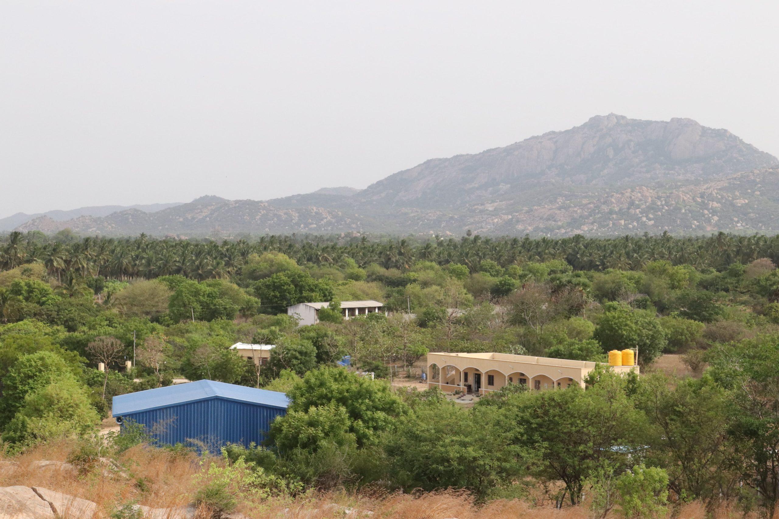 Oasis of Krishnagiri